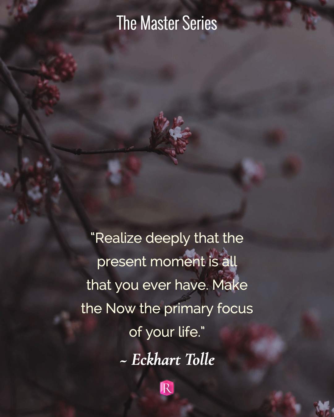 "The master Series from Rochelle L. Cook ""Realize deeply that the present moment is all that you ever have. Make the Now the primary focus of your life."" Eckhart Tolle"